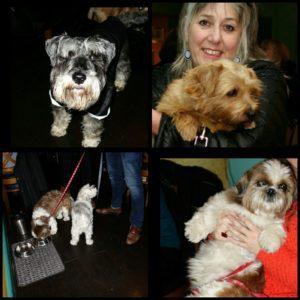 the-boatman-battersea-dogs-dinner-dogs-2