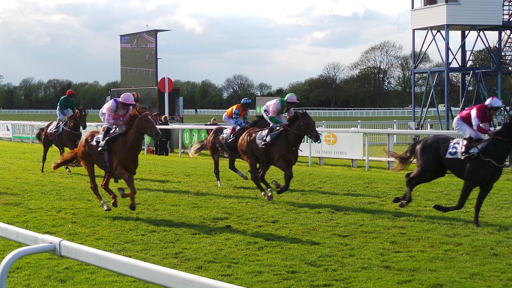 royal-windsor-racecourse